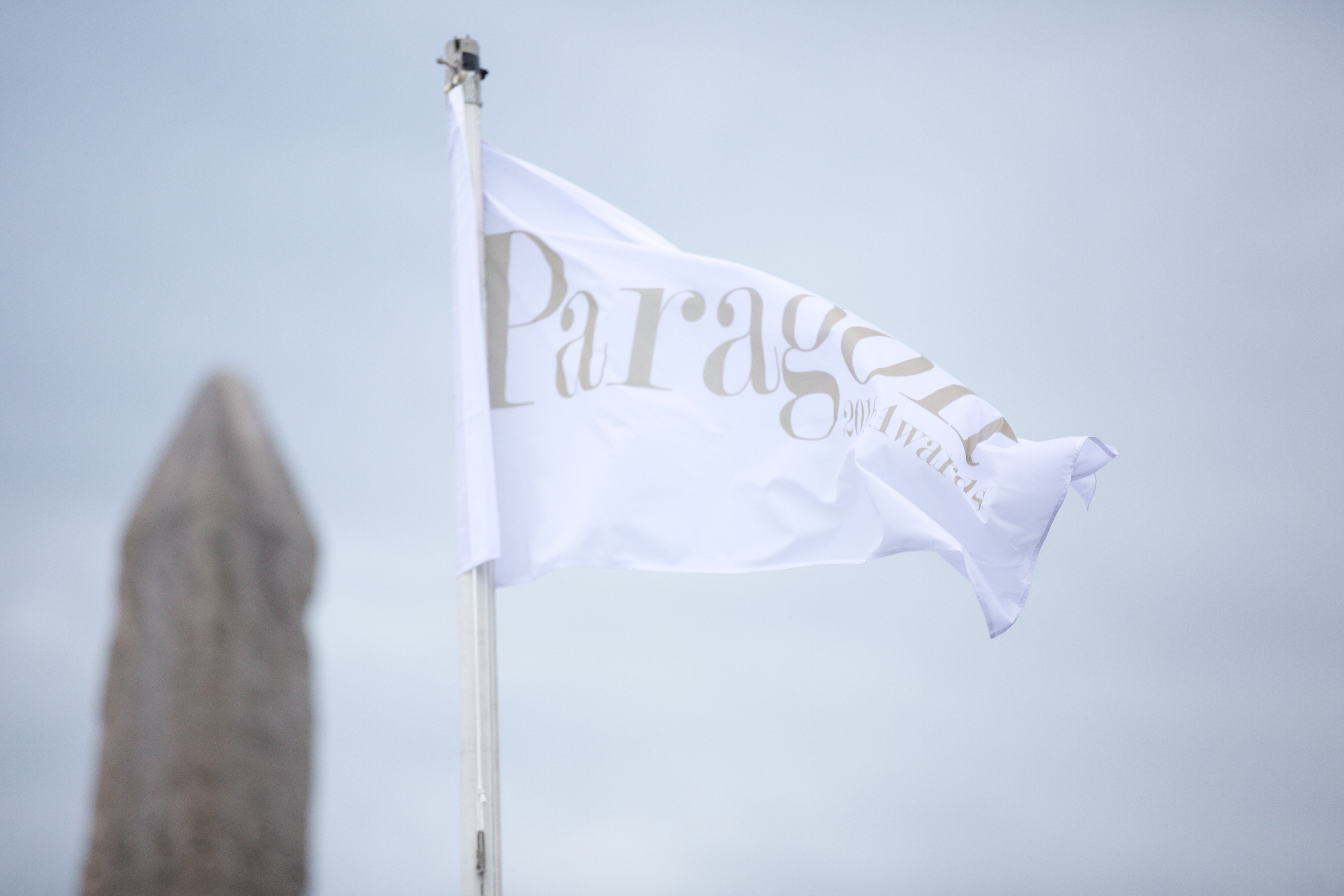 Paragon Awards Flag